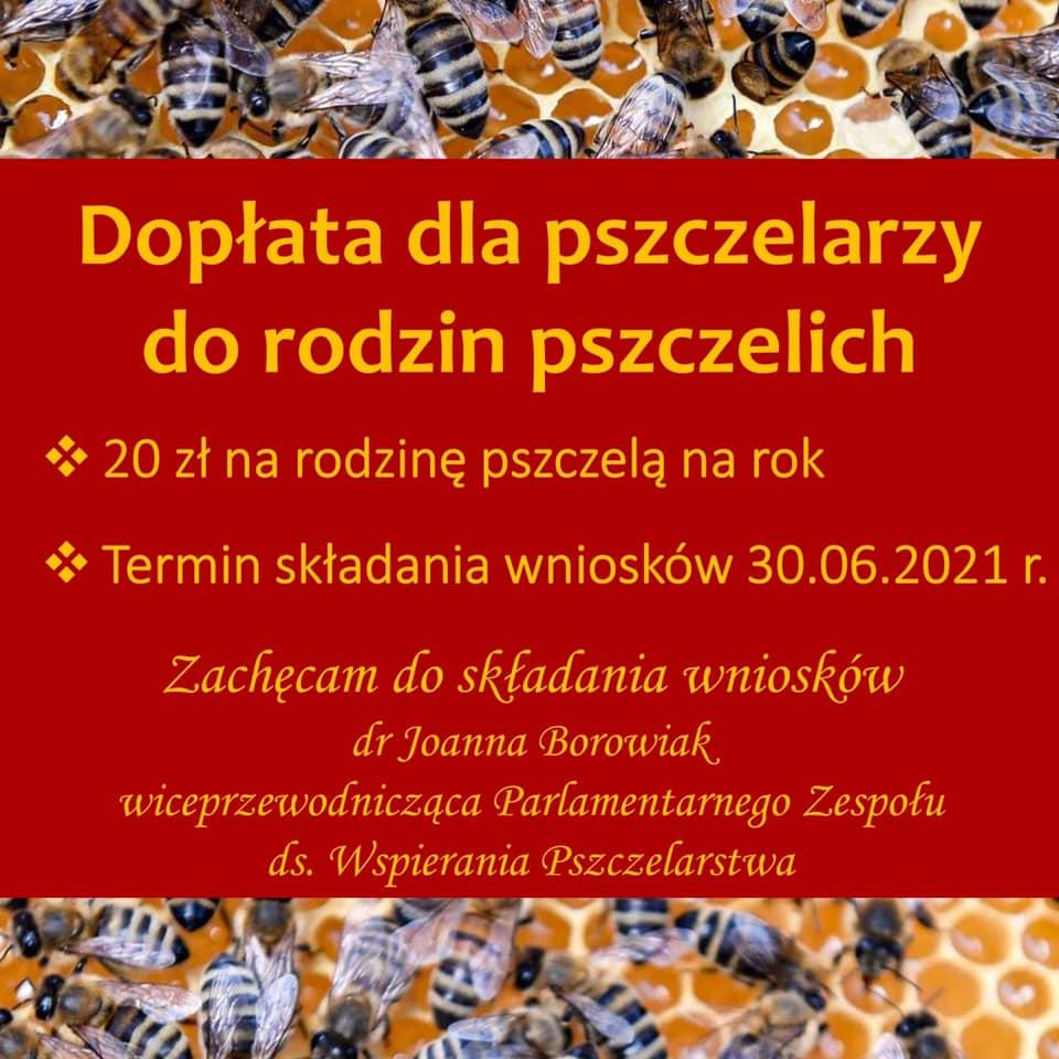 Pomoc dla pszczelarzy do przezimowanych rodzin pszczelich